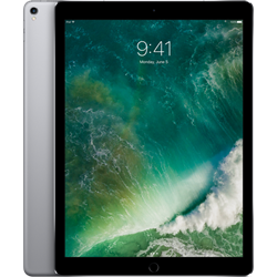 Cellular Apple iPad Pro 256GB Space Gray MPA42LL/A Mid 2017