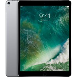 "Apple iPad Pro 10.5"" 256GB WiFi Space Gray MPDY2LL/A"